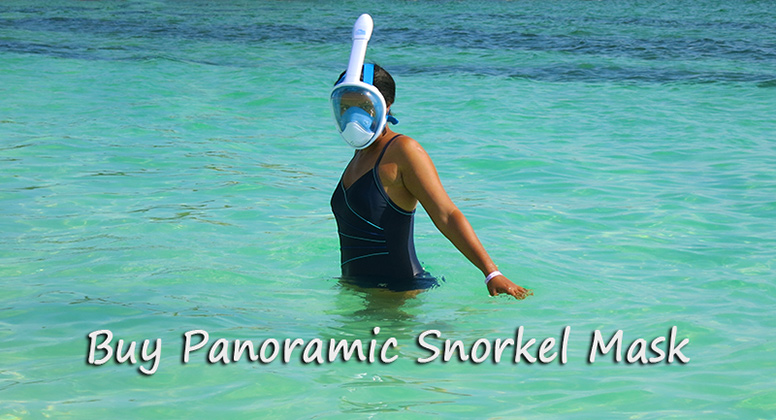 Panoramic Snorkel Mask