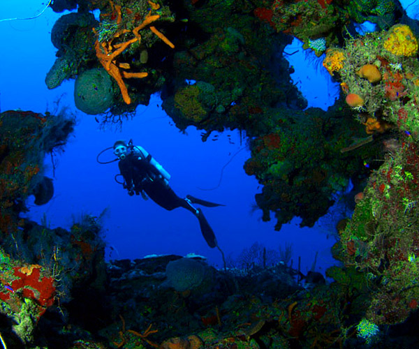 Diving in Punta Perdis Zapata